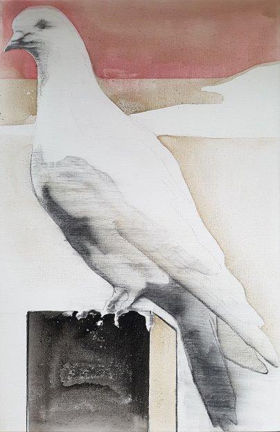 Duif, Zijluik, 100-65 cm